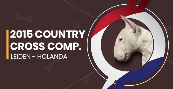 Country Cross Competition 2015 – Leiden (Holanda)