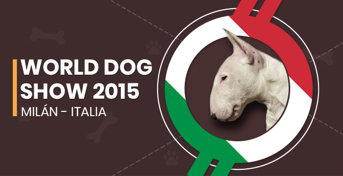 World Dog Show 2015 – Milán (Italia)